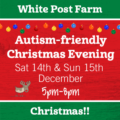Autism-friendly Christmas Evenings