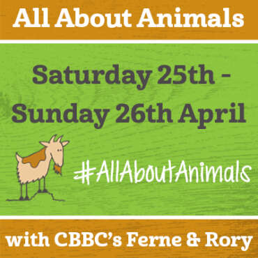 All About Animals with Ferne & Rory