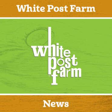 Farm Update 21.03.20