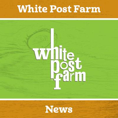 Farm Update 10.06.20